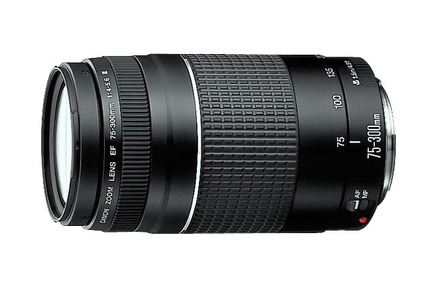 75-300 mm Canon lens