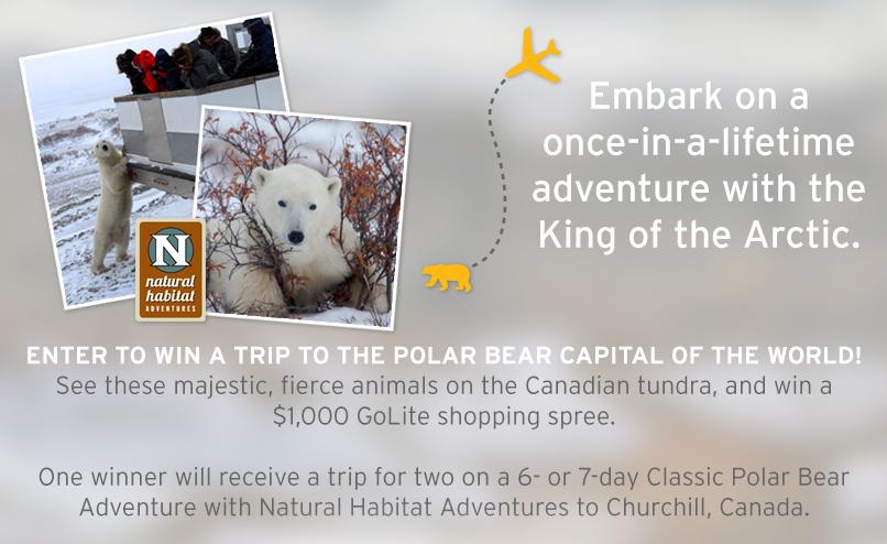 golite polar bear giveaway